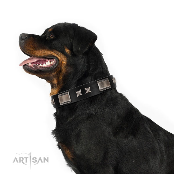 Comfy wearing best quality full grain genuine leather dog collar with embellishments