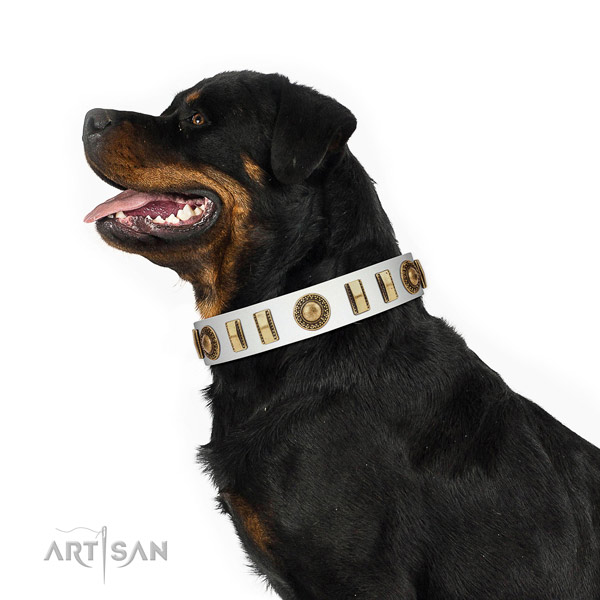 Inimitable natural leather dog collar with corrosion proof D-ring