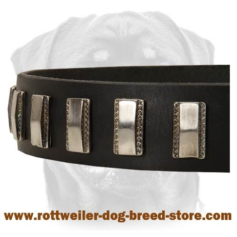 Walking Leather Dog Collar For Rottweiler