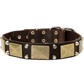 Rottweiler Dog Leather Dog Collar- brass massive +2 pyramids