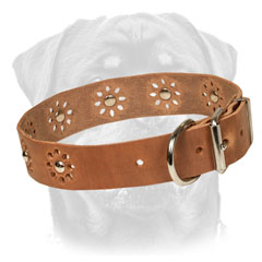 Firm Leather Rottweiler Collar Equipped with studs of flowers