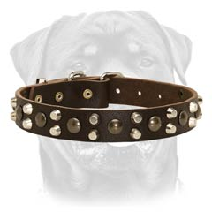 Leather dog collar with pyramids and studs