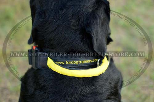 Finest Rottweiler Nylon Collar