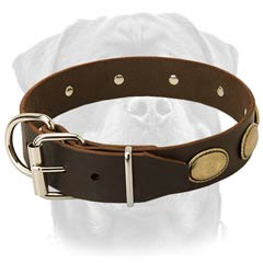 Adjustable leather dog collar for powerful Rottweilers