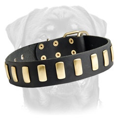 Leather dog collar with hand polished surfaces
