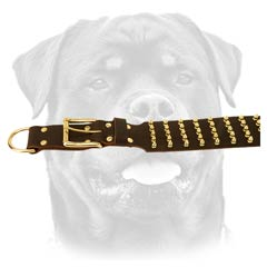 Widest leather dog collar
