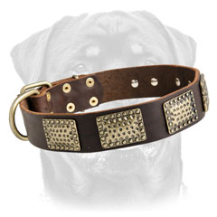 Topnotch leather dog collar for Rottweilers