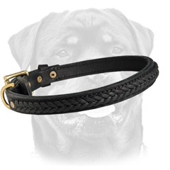 Decorated dog collar for Molosser dogs