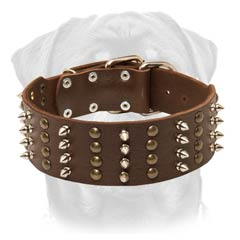 Handicraft well-made leather dog collar