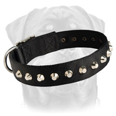 Best Rottweiler nylon collar