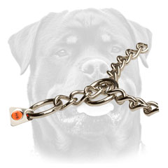 Strong Rottweiler collar in silver color