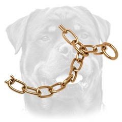 Strong Rottweiler collar in goldish color