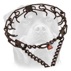 Strong Rottweiler Metal     Pinch collar