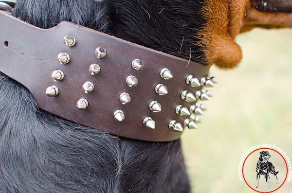 Handcrafted with spikes Rottweiler collar