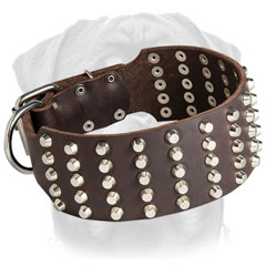 High quality leather Rottweiler collar with fashionable pyramids