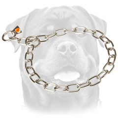 Metal Rottweiler Collar for     obedience training
