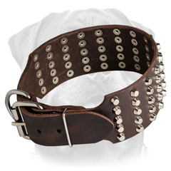 Durable leather collar for Rottweiler