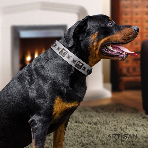 Rottweiler handmade collar with exquisite decorations for your doggie