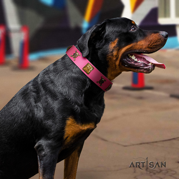 Rottweiler easy wearing genuine leather collar for your lovely pet