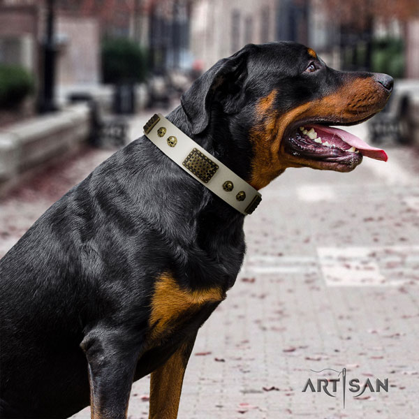 Rottweiler handcrafted collar with extraordinary decorations for your four-legged friend