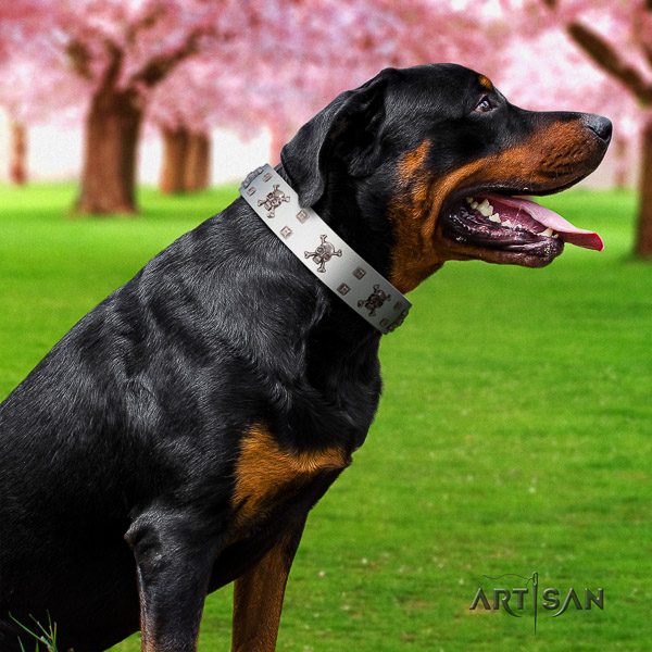Rottweiler everyday use full grain leather collar for your handsome doggie
