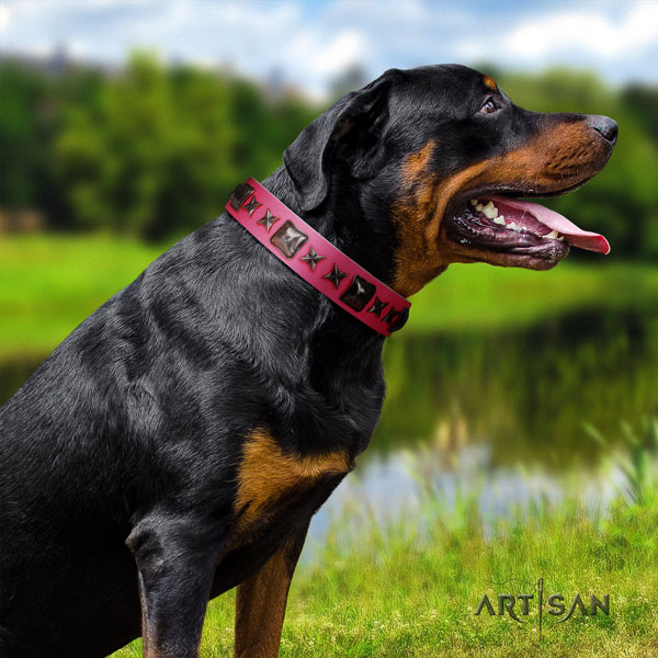 Rottweiler convenient collar with stylish design decorations for your dog