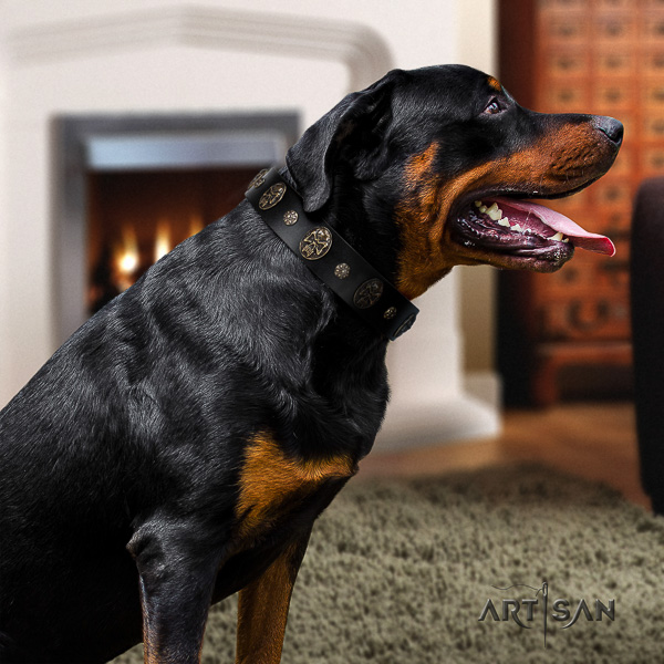 Rottweiler handy use natural leather collar for your lovely doggie