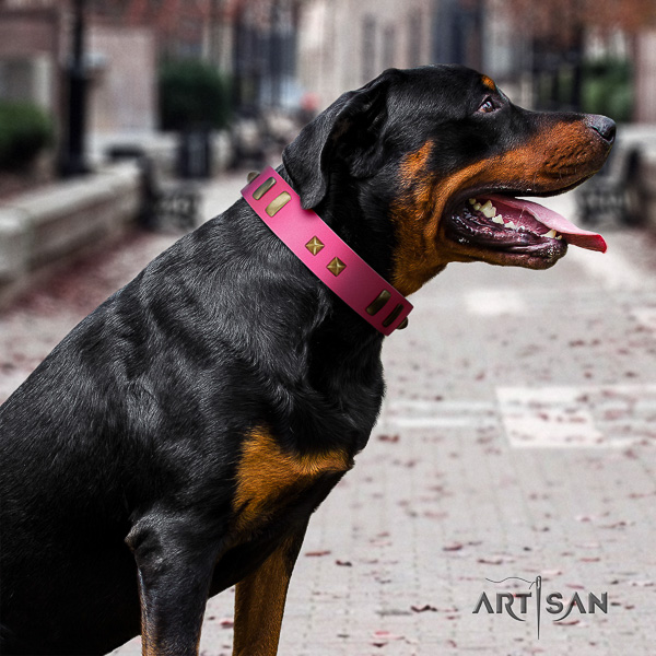 Rottweiler easy wearing natural leather collar for your beautiful dog