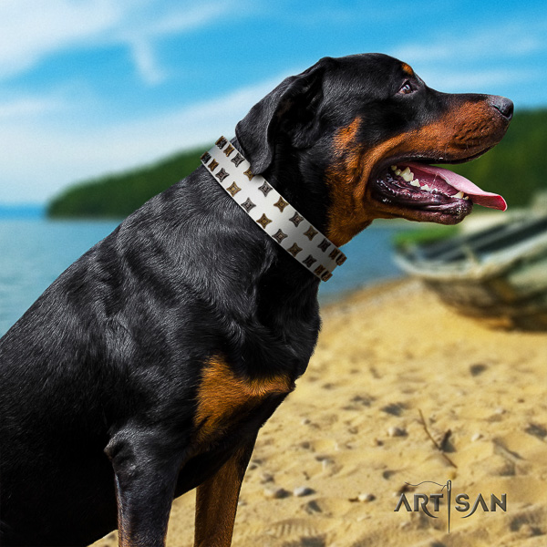 Rottweiler daily walking natural leather collar for your attractive dog