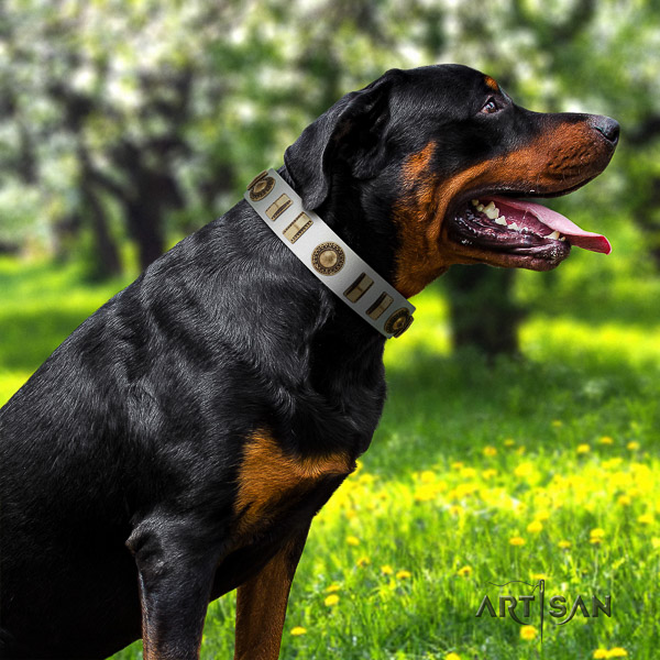 Rottweiler daily use full grain leather collar for your impressive pet