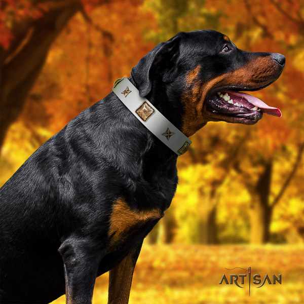 Rottweiler everyday use natural leather collar for your lovely canine