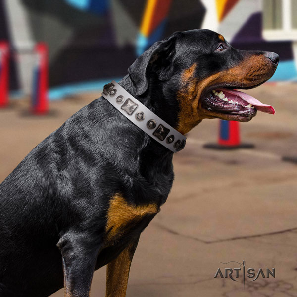 Rottweiler easy to adjust collar with designer adornments for your dog