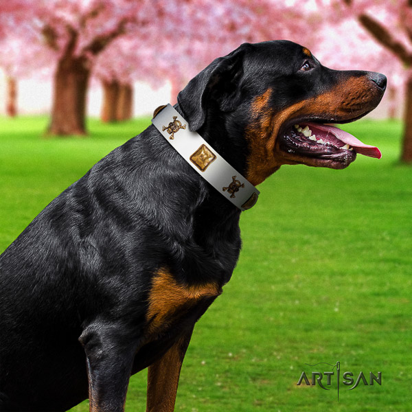 Rottweiler easy wearing leather collar for your attractive dog
