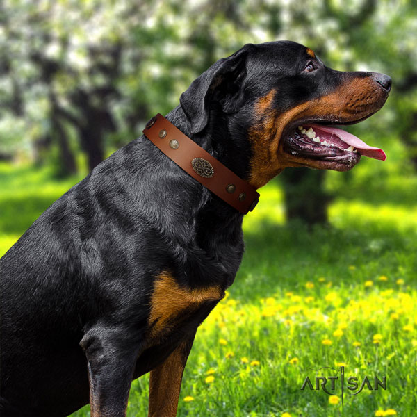 Rottweiler handcrafted collar with fashionable decorations for your dog