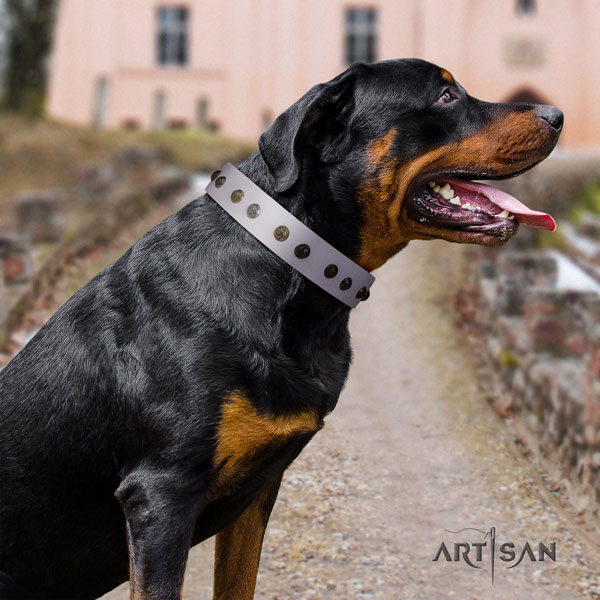 Rottweiler easy adjustable collar with inimitable adornments for your four-legged friend