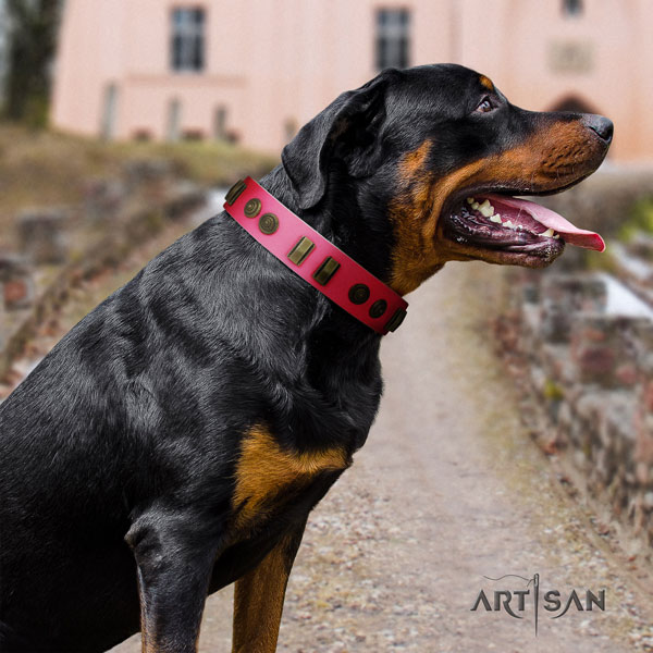 Rottweiler handcrafted collar with impressive decorations for your doggie
