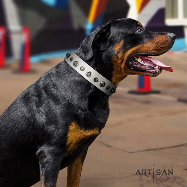 Rottweiler easy adjustable collar with unusual embellishments for your canine