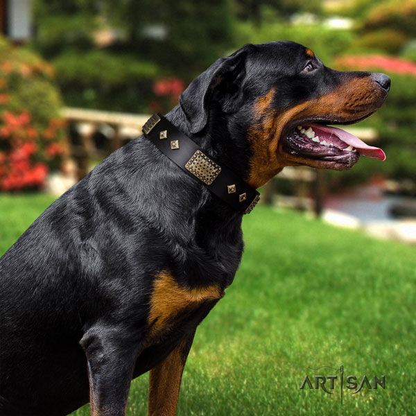 Rottweiler easy adjustable collar with exceptional decorations for your four-legged friend