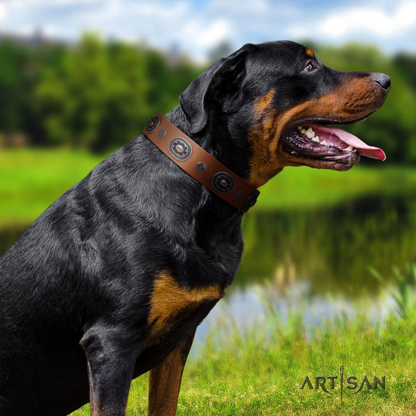 Rottweiler handcrafted collar with top notch adornments for your four-legged friend