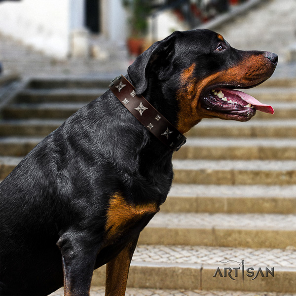 Rottweiler stylish walking leather collar for your attractive doggie
