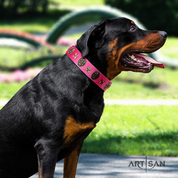 Rottweiler easy wearing genuine leather collar for your attractive dog