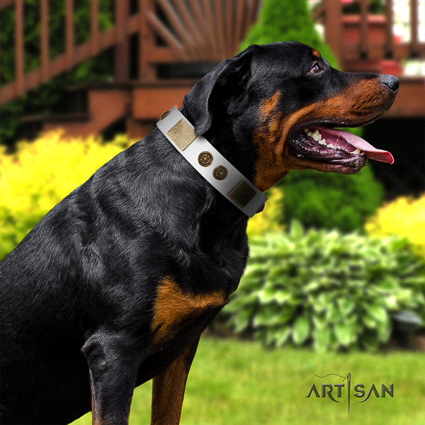 Rottweiler fancy walking genuine leather collar for your stylish canine