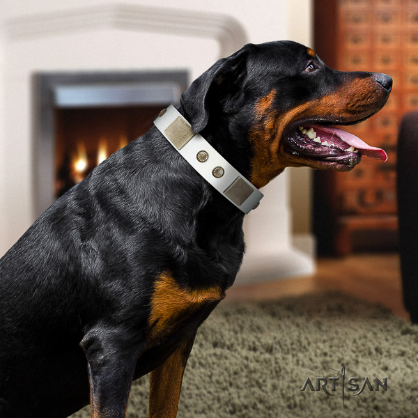 Rottweiler daily use full grain natural leather collar for your beautiful pet