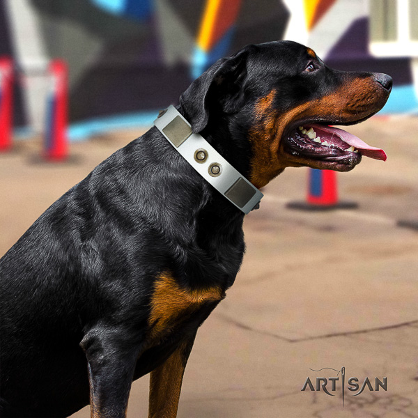 Rottweiler walking natural leather collar for your beautiful canine