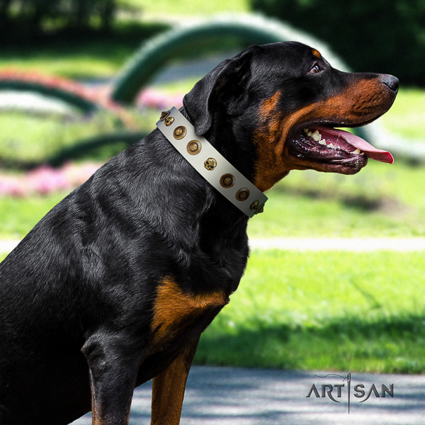 Rottweiler easy wearing natural leather collar for your lovely doggie