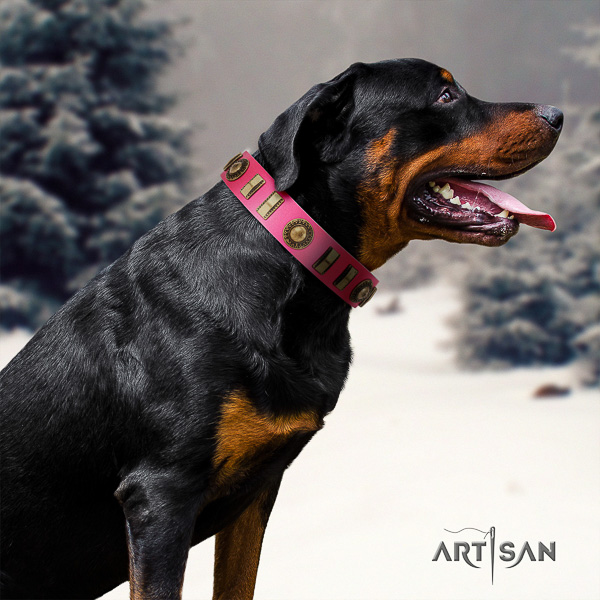 Rottweiler basic training full grain natural leather collar for your beautiful four-legged friend
