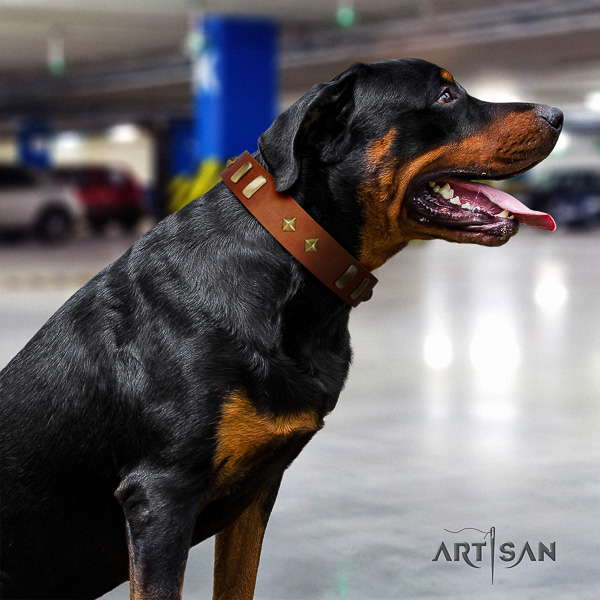 Rottweiler fancy walking leather collar for your attractive doggie