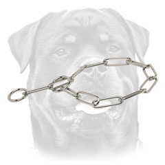 Strong Rottweiler collar with fur-saving links