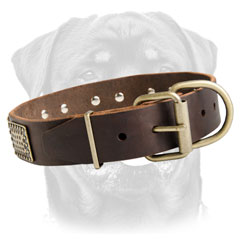 Rottweiler collar with strong buckle
