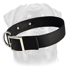 Heavy-duty nylon dog collar